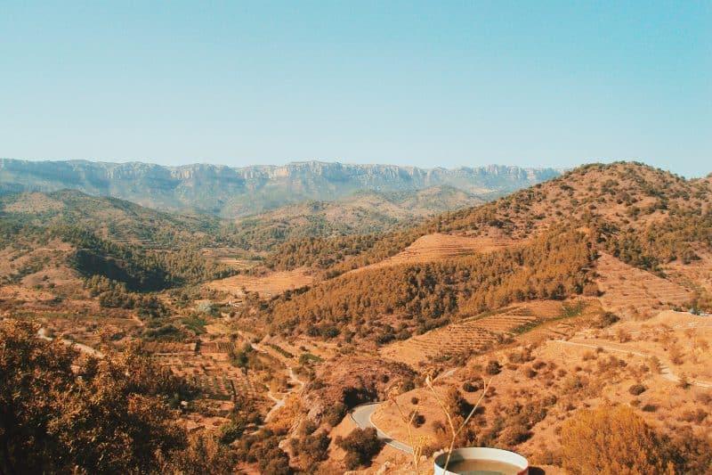 El Priorat landscape