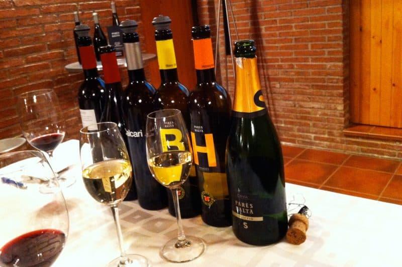 assortment of wines